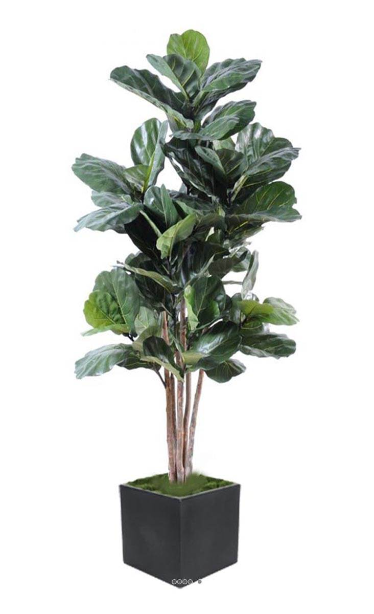 Ficus lyrata artificiel 6 troncs bois en pot tres chic et for Ficus artificiel