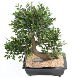 Bonsaï Orme de Chine Artificiel H 50 cm D 45 cm en pot
