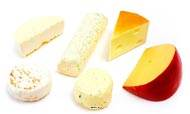 Fromages artificiels assortis base chevre en lot de 6 en Plastique soufflé