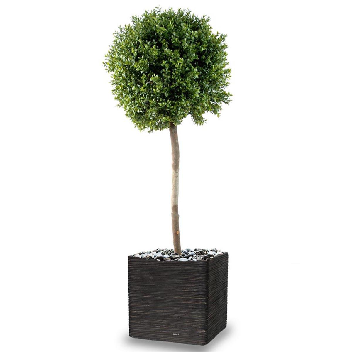 Arbre Fruitier En Pot Interieur buis boule artificiel h 180 cm d 80 cm tronc naturel int ext en pot
