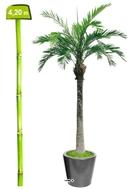 palmiers phoenix artificiels. Black Bedroom Furniture Sets. Home Design Ideas